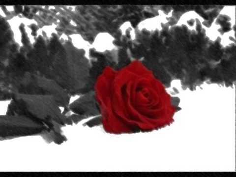 Música Sonho de Inverno