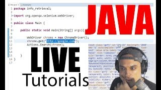 Programming Live - custom Java App/Web-Bot