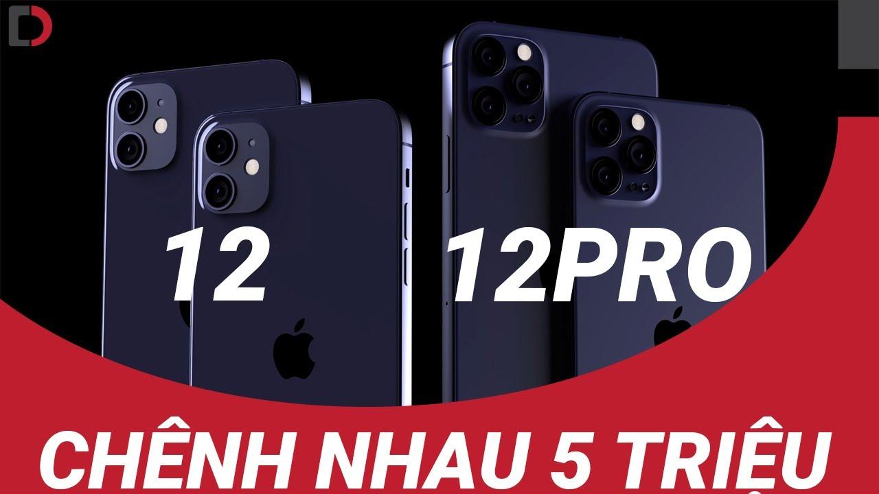 Chênh nhau 5 triệu - Lựa chọn iPhone 12 hay iPhone 12 Pro?