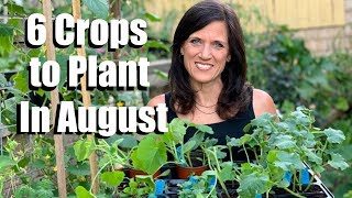 6 Crops to Plant in August for Late Summer Harvest 🌿🍅🥒