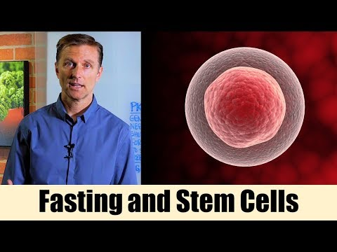Using Fasting to Enhance Stem Cells