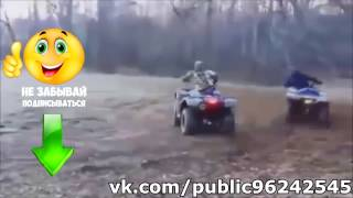 Приколы Январь 2017 №25