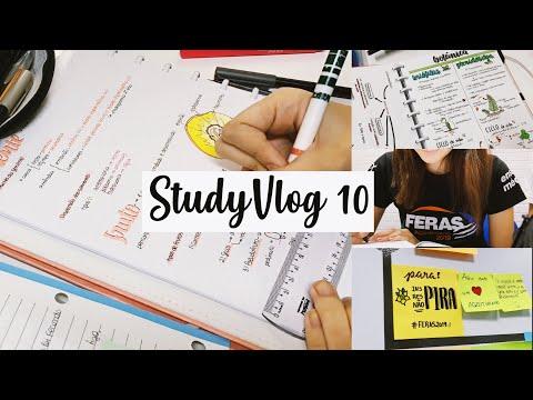StudyVlog 10 | Estudando domingo + rotina de segunda-feira | Ana's Studies