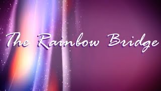 The Rainbow Bridge | 🙏 God Quotes