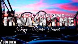 Shaggy feat Ricardo Ducent - It Wasn't Me (Tropical Sunset Remix)