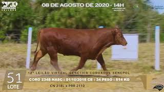 Coro 2348 b4 fiv