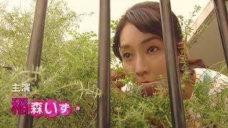 mqdefault - 稲森いずみ主演のWOWOWドラマ「それを愛とまちがえるから」 仲里依紗、鈴木浩介、安藤政信が出演