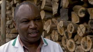 GIZ | Kenya: Energy Efficiency in the tea sector