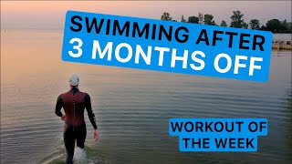 First Open Water Swim After Quarantine & Beginner Tips