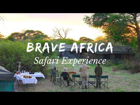The Brave Africa Safari Experience