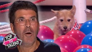 10 UNFORGETTABLE WORLD RECORD Auditions On Got Talent!