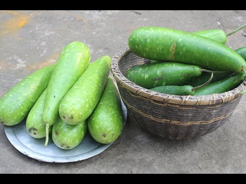 Traditional village food Lau taki ghonto recipe