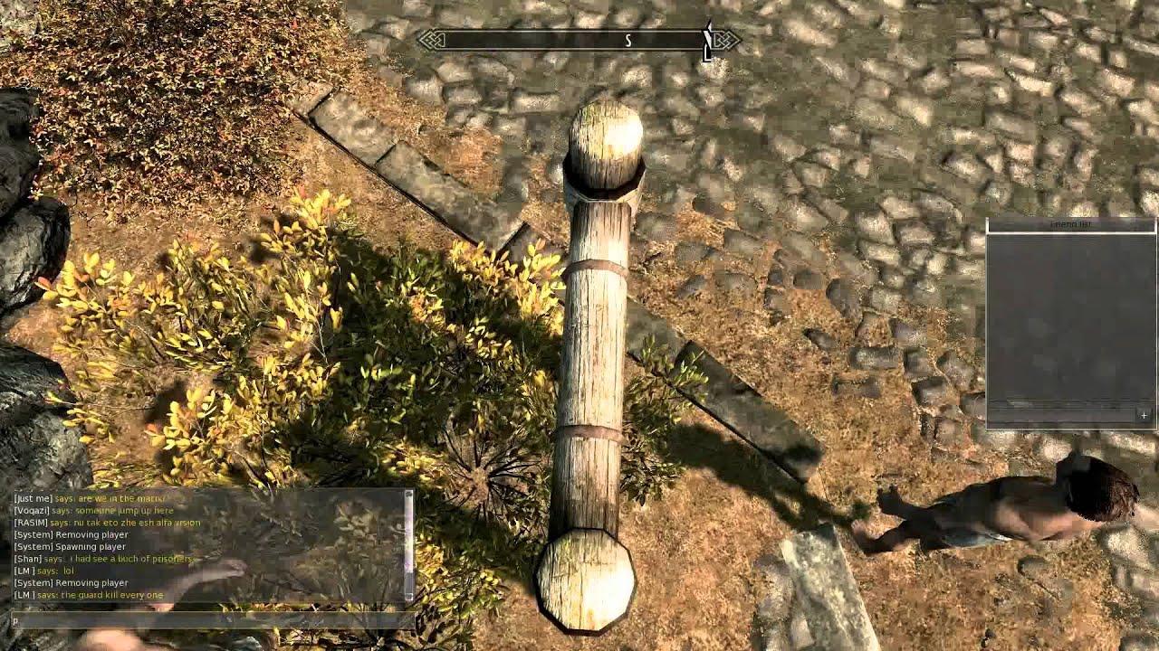 Skyrim Now Has Multiplayer (Sort Of)