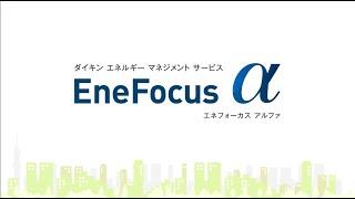 EneFocus α