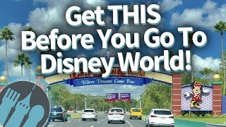Get THIS Before You Go To Disney World! (Some SECRET Tips From Our DFB Guide!)