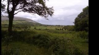 Medley Branduardi on Celtic Harp