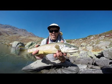 ALTITUDE-Another good day of flyfishing