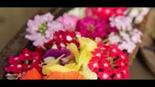 Edible Flowers Bersama Arini Soewarli
