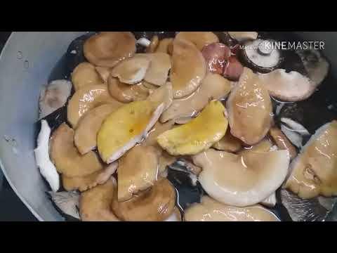 Бабушкин  способ  горячей  засолки  грибов. Мокрухи, грузди,волнушки,сыроежки