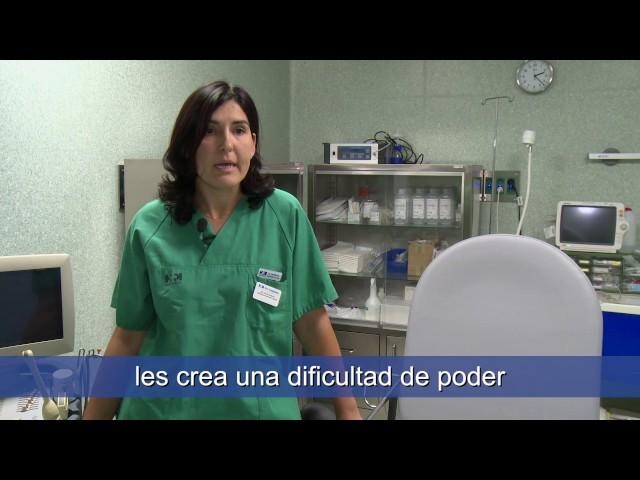 ¿Cómo es el proceso de la ovodonación? - HM Fertility Center
