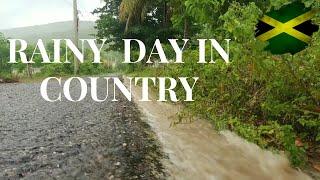 RAINY SEASON IN ST ELIZABETH JAMAICA   JAMAICA VLOG