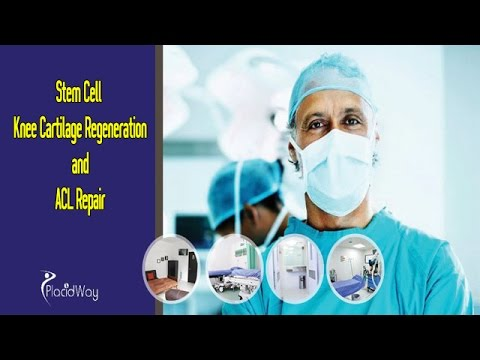 Stem-Cell-Knee-Cartilage-Regeneration-and-ACL-Repair-in-India