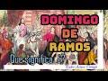 DOMINGO DE RAMOS - Que Significa? - Padre Arturo Cornejo