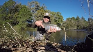 Fly Fishing Oklahoma's Blue River: C&R section 11-3-19