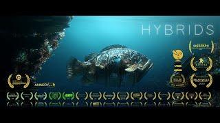 Hybrids Movie