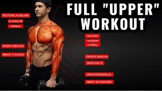 The Best Science-Based Upper Body Workout For Growth (Chest/Back/Arms/Shoulders)