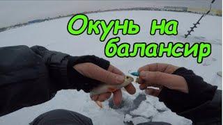 Рыбалка на орловском карьере щелковский район