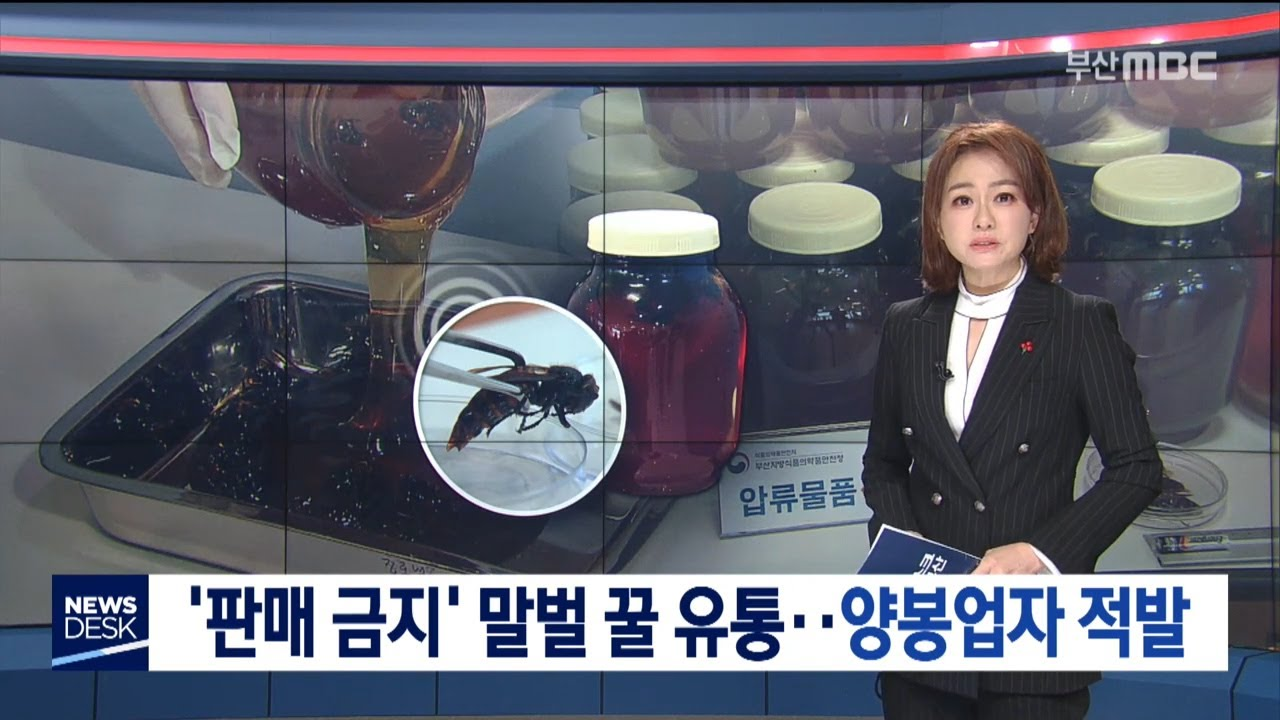 '판매 금지' 말벌 꿀 유통.. 양봉업자 적발