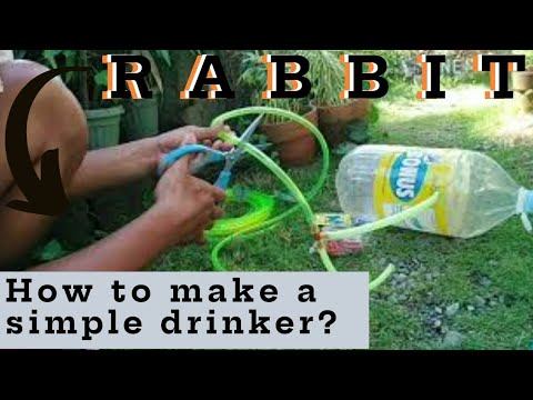, title : 'Rabbit (How to make simple drinker) TAGALOG TUTORIAL