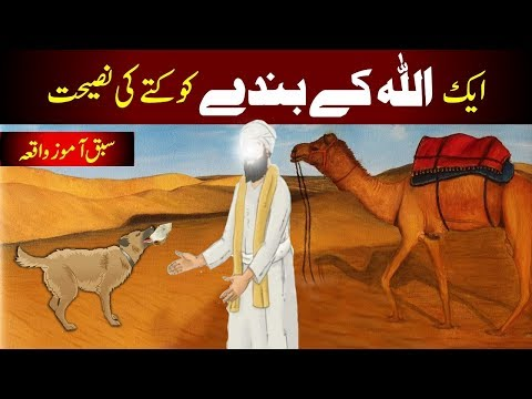 اللہ ویلے کوٹ کی نصرت || ایک صوفی اور ایک کتے کی کہانی || اللہ والہ یا اکی کوٹا