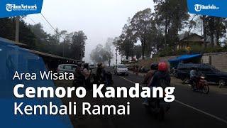 Sempat Ramai Gegara Knalpot Brong, Cemoro Kandang Kini Kembali Ramai Wisatawan dari Berbagai Daerah