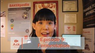 Dough Fermentation In Baking | Ask Dr. Lin Ep 9 | BAKERpedia