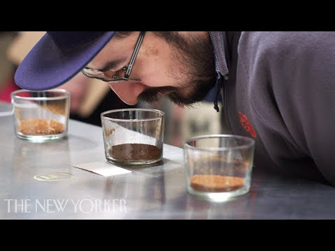 Inside the World of High-End Coffee | Annals of Obsession
