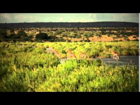Kruger to Coast Volunteer Adventure Video