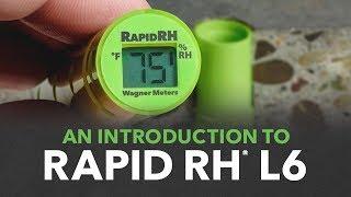 Rapid RH L6: Green Is the New Orange
