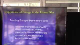 4 Reasons to Feed Hay to your Horse