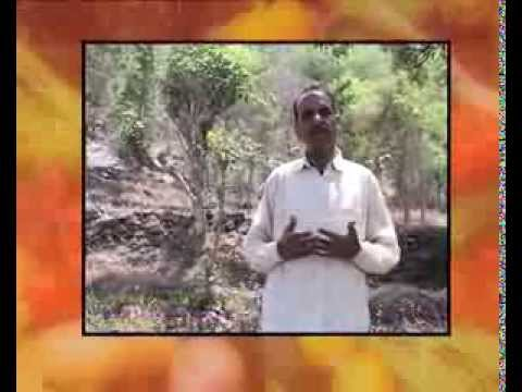 Farmer Hariman Sharma, Bilaspur