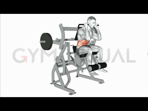 Lever Lying Crunch (plate loaded)