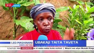 Visa vya ubakaji vyakithiri Taita Taveta huku msichana akibakwa na mjombake