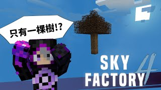 Minecraft Modpack Survival - Sky Factory 4 #1 Survive even if there is only one tree in the void