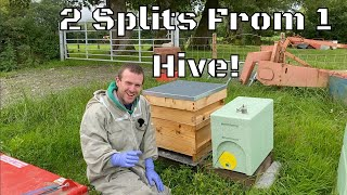 Making 2 Splits From 1 Hive Leaving You With 3 Beehives Using The BS Honey Bees 2 In 1 Nuc