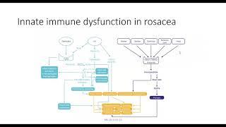 Rosaceas komplexitet på ett lätt sätt