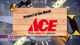 How To Fix A Garbage Disposal - Ace Hardware on The Approved Home Pro Show