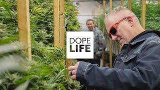 DOPE Life | Twenty22Many