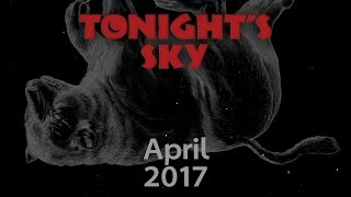 """TONIGHT'S SKY: Skies should be fairly dark for this year's annual """"April shower"""""""