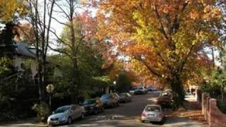 preview picture of video 'Autumn in Kew Gardens, NY (2007)'